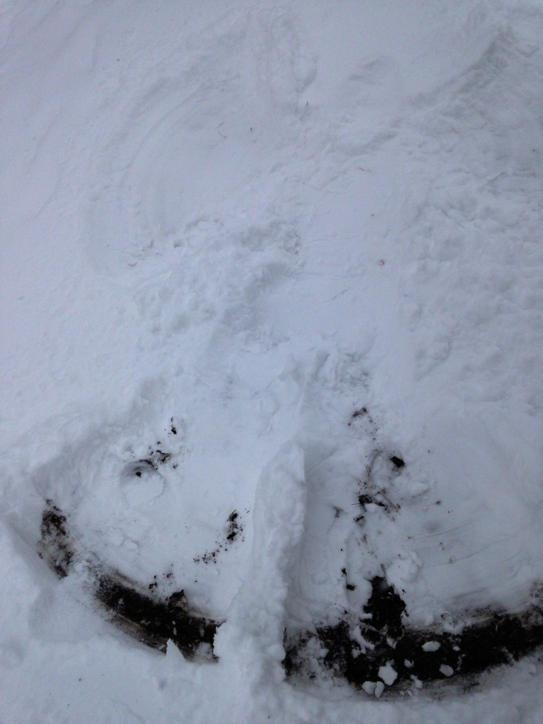 Hard to see, but I made a snow angel!