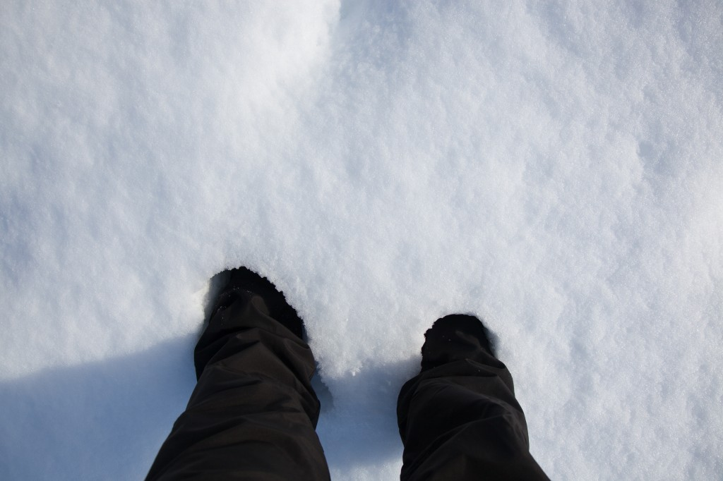 In the open area of the park, the snow came up to mid-calf on me