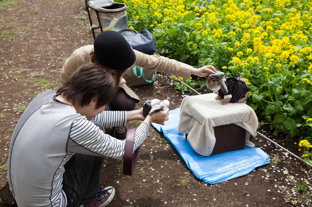 Yep, on a fashion shoot with their pet rabbit.