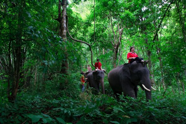 Picture credit: http://www.visitthailand.travel/